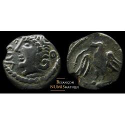 VÉLIOCASSES - Bronze ECOA -...