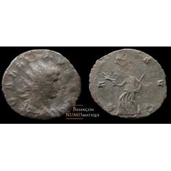 Monnaie de Gallien de l'atelier de Siscia