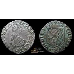 Dole, carolus de 1593
