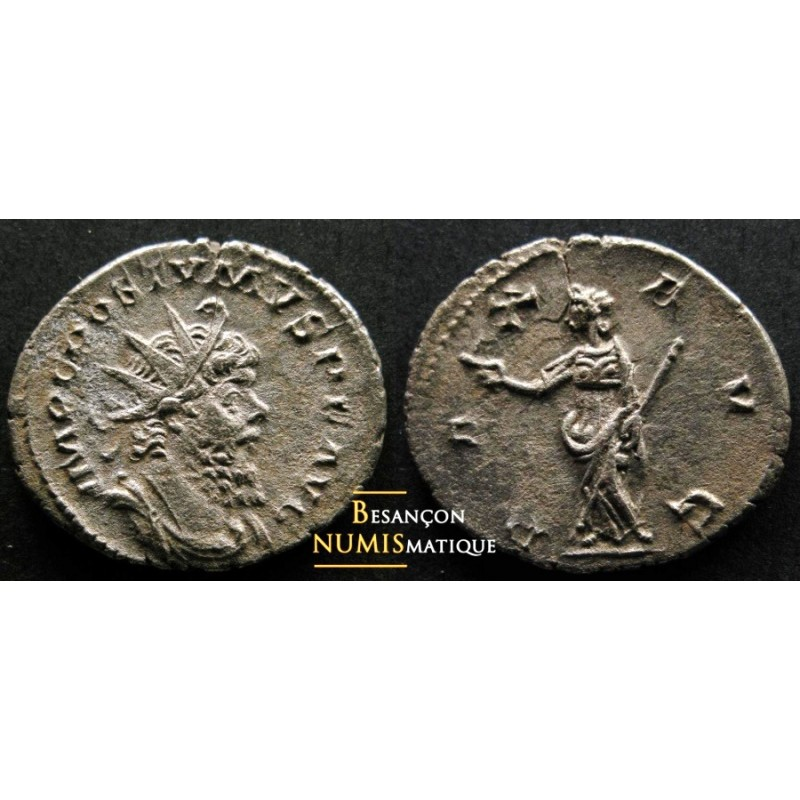 POSTUME - COLOGNE - PAX AVG - ELMER 565