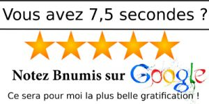banniere google